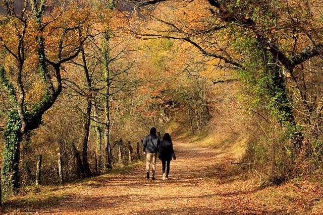 Love of autumn