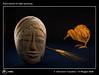 1144_D8E_1488_bis_painting_scultura