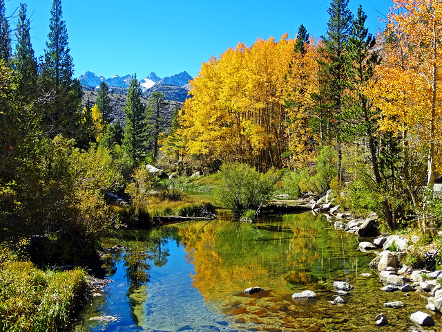 The Promise of Fall, Bishop Creek, Sierra Nevada 2018