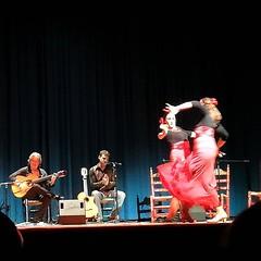 Forli_teatro