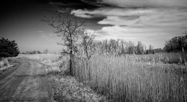 Barren Wetlands Road