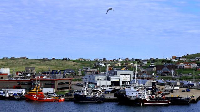Port de pêche à Cap aux Meules !