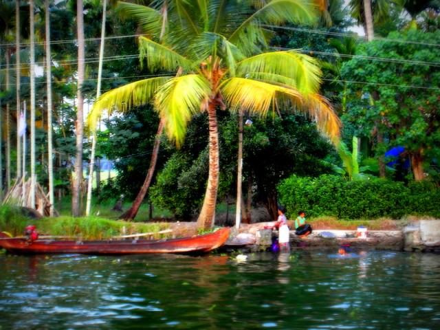 kerala swimmer, gauguin style