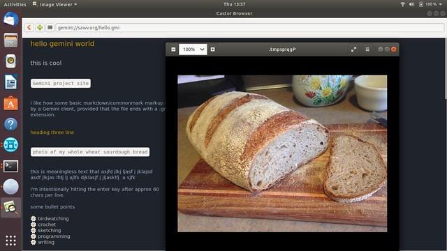 screenshot of viewing an image at my gemini site