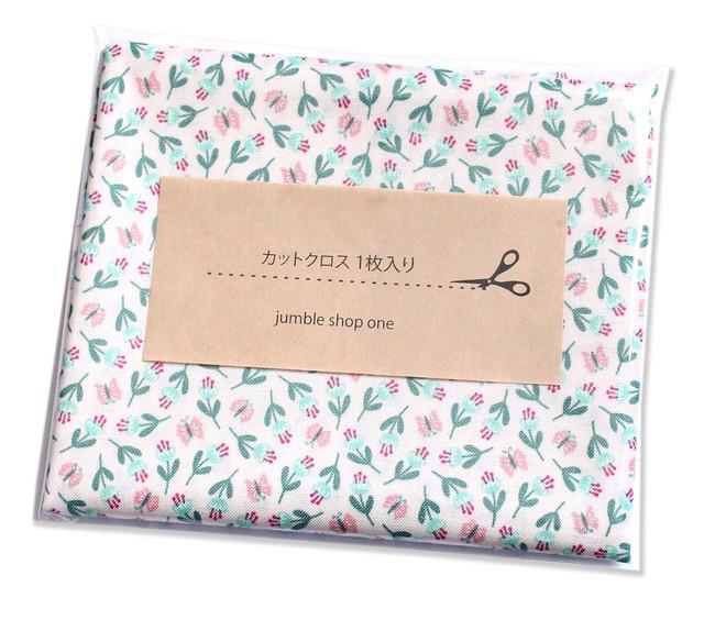 カットクロス Felicity Fabrics Summer Garden in Watermelon 610028