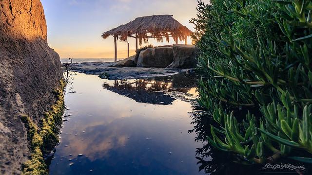 Socially Distant at Windansea Beach