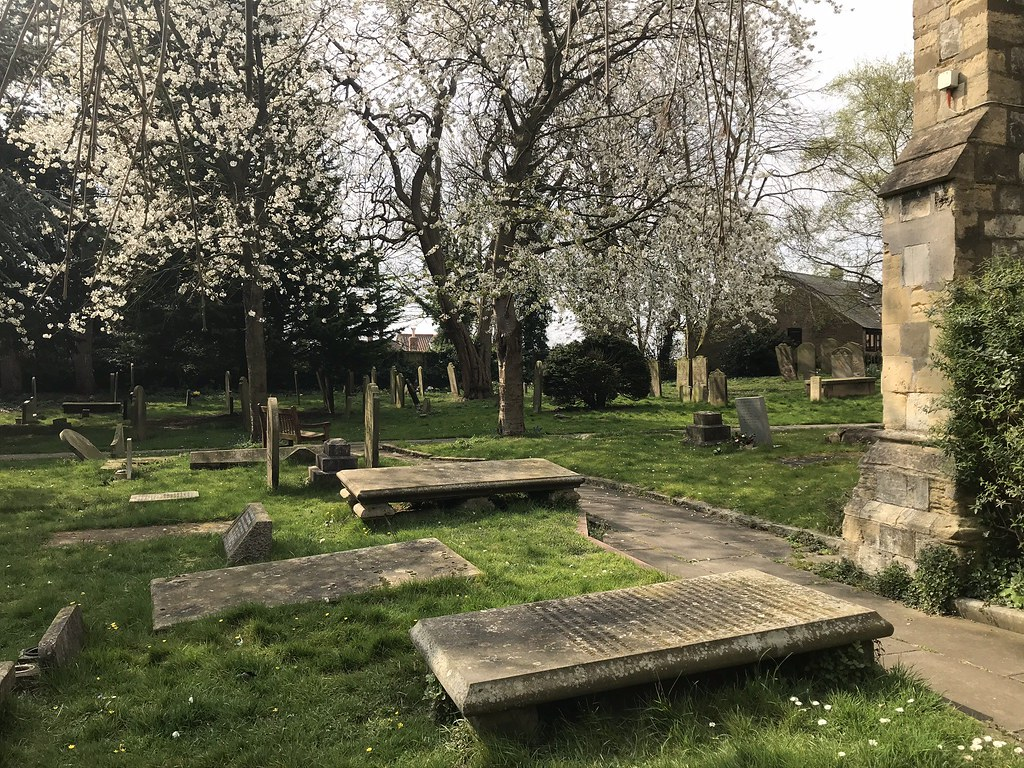 Parish Church of St Stephen Acomb - Graveyard Squirrel (April 2020)