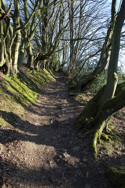 Uphill VII