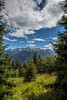 Pines and Mountains of High-Tatras