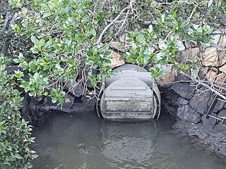 Little Creek outlet Brisbane River