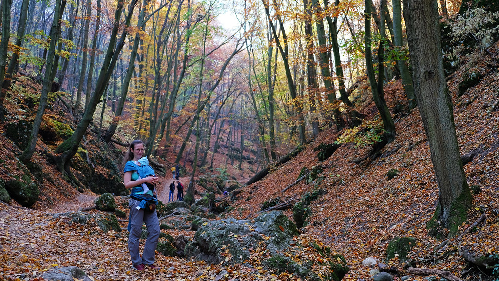 Hike with a newborn baby, Pilis Mountains, Hungary