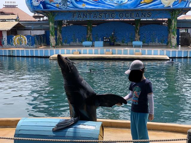 Fenjie Island Ocean Museum April 2020 (10)
