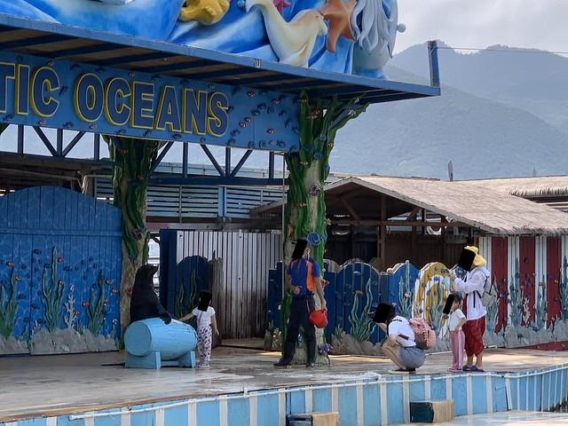 Fenjie Island Ocean Museum April 2020 (7)