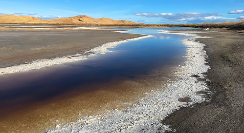 coyotehillsregionalpark fremont california ebparksok pelicantrail iphonese coyotehills