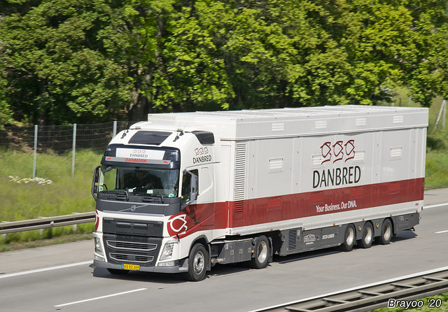 Danbred (DK)