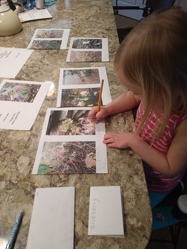 labelling all her flower photos