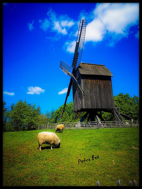 Open-air museum in Hessenpark, Germany! An old windmill!