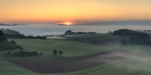 *Spring morning over the Wittlich Valley II*