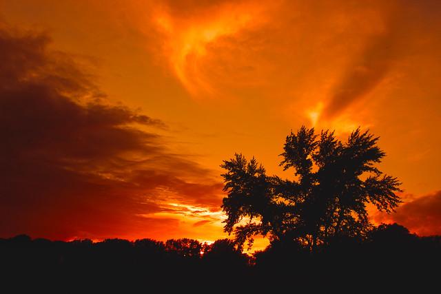 Evening glow / Esti izzás