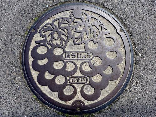 Hojo Tottori, manhole cover 2 (鳥取県北条町のマンホール2)