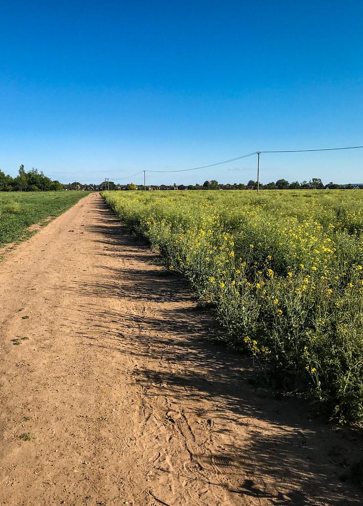 Running path