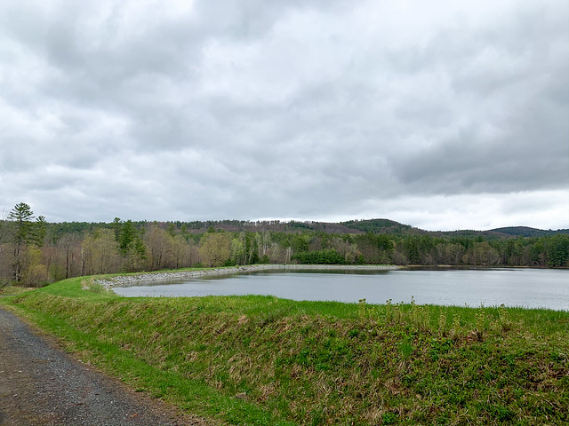 Trescott Water Supply Lands: hiking newhampshire hanover trescottwatersupplylands etna unitedstatesofamerica
