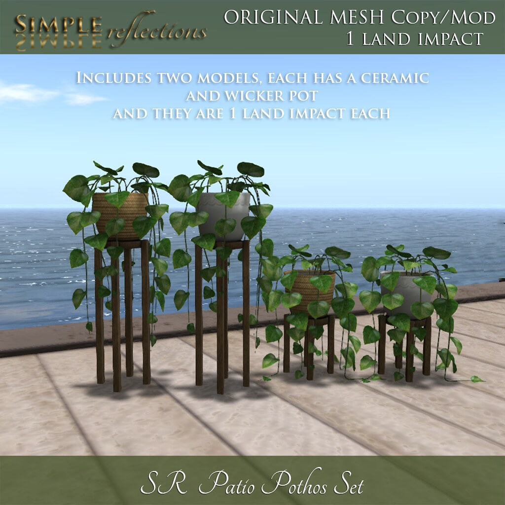 SR Patio Pothos Set