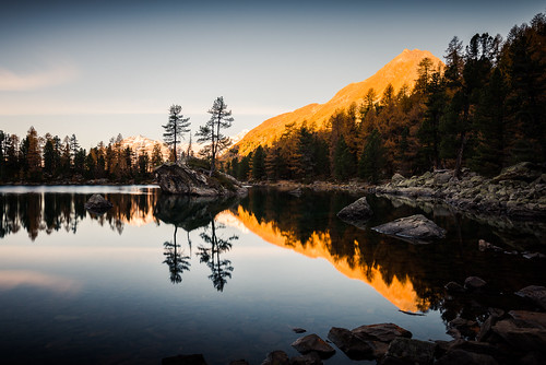switzerland graubünden schweiz camp val da grisons water lake mountains mountain sunset light sun forest scene saoseo rock tree lagh island poschiavo di campo wasser see berg berge reflection baum wald outdoors nature scenery idyllic