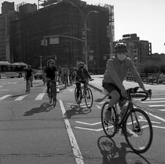 cycling study