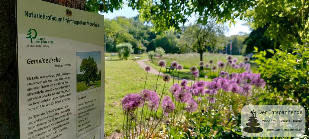 Naturlehrpfad im Pfrimmgarten Monsheim