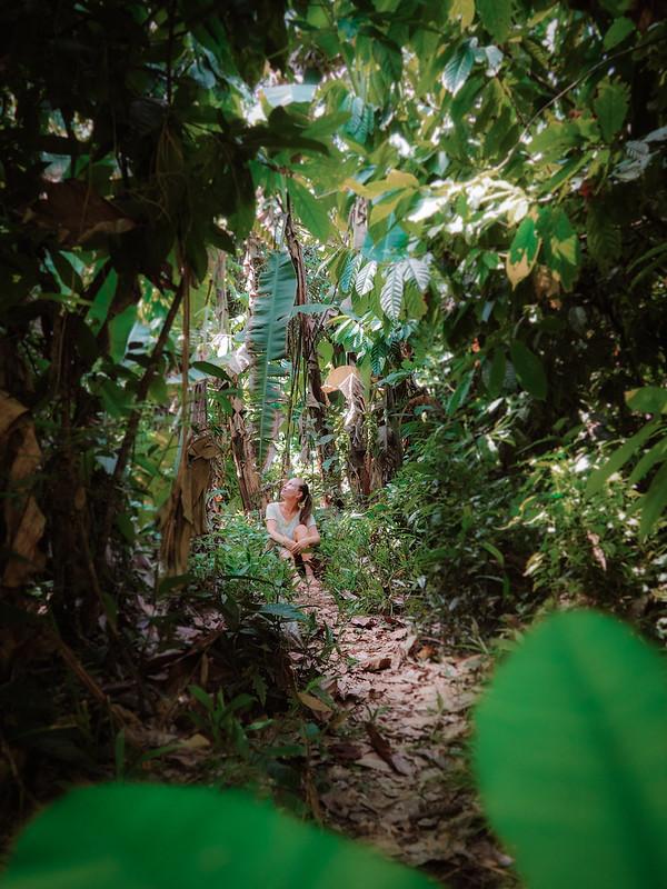 viidakko (2)