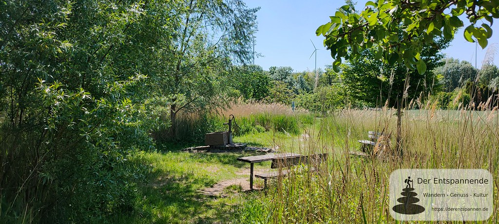 Schwengelpumpe auf dem Naturpfad zwischen Mölsheim und Wachenheim