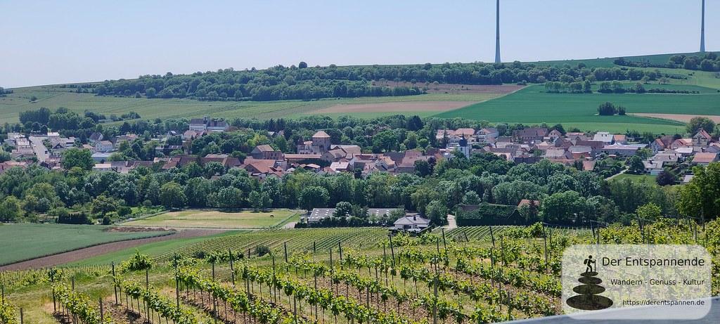Weinrast Mölsheim: Blick nach Wachenheim (2x Zoom)