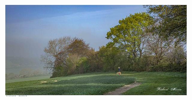 Early morning mist, Eynsford.