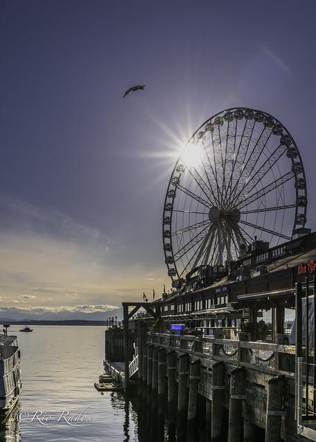 Seattle Starburst