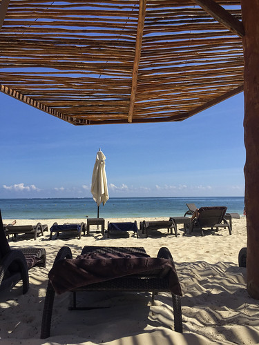 View when out of the sun, Royalton Riviera Cancun Resort & Spa, Mexico