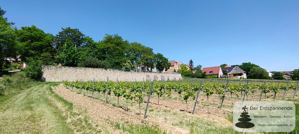 Weinrast Mölsheim