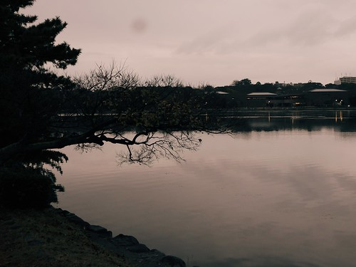 Ohori Park Fukuoka Things to Do