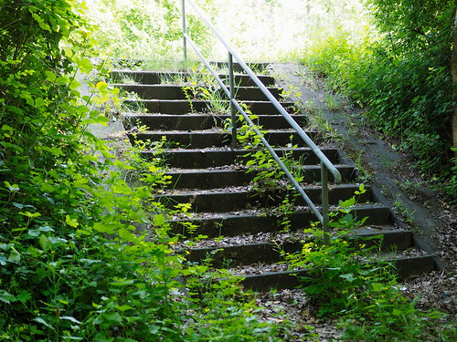 7e4_5172422-stairs-road