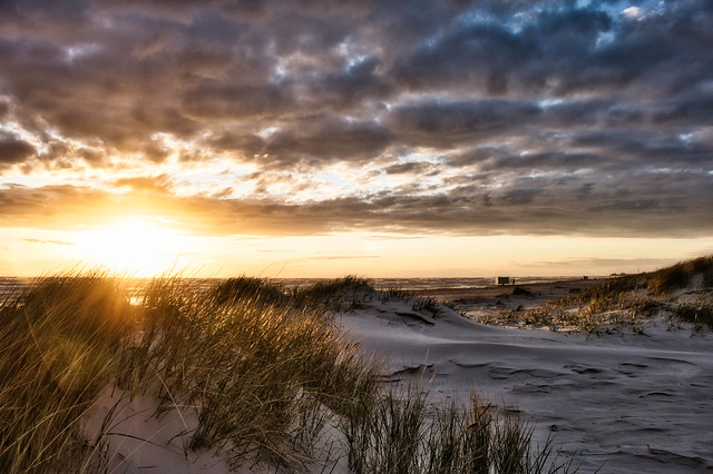 Sunset. Among the dunes to the sea ... (May 16, 2020)