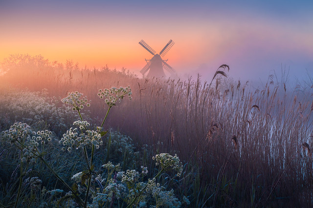 Mill of the North
