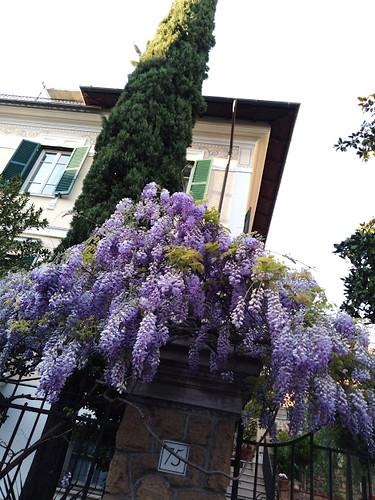 città giardino particolare