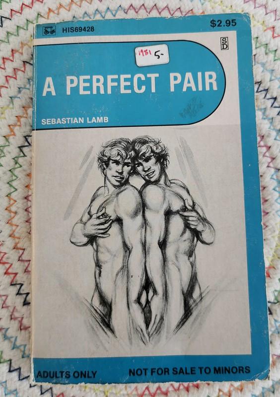 A Perfect Pair by Sebastian Lamb