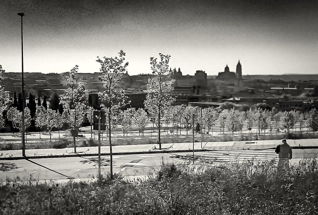 Salamanca, desde la platina.