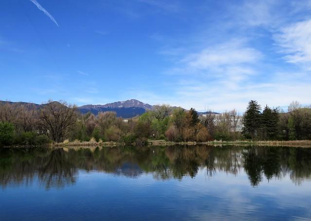 Calming Reflection