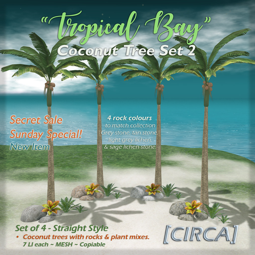 "[CIRCA] – ""Tropical Bay"" Coconut Tree Set 2 (SSS)"