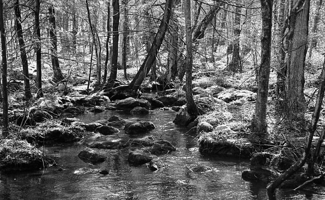 Warwick Brook