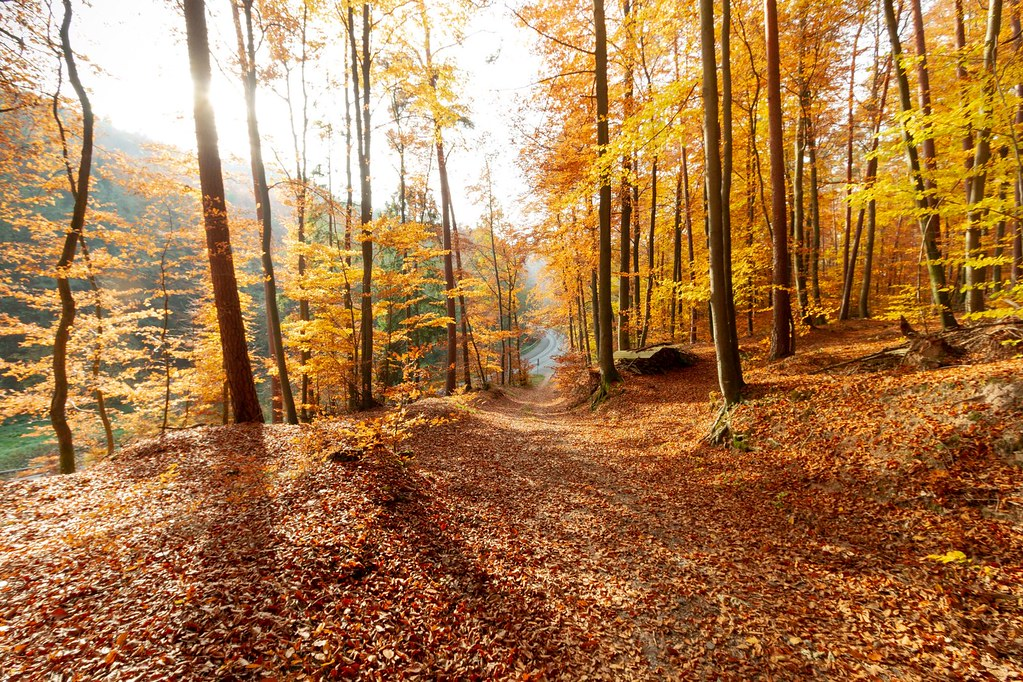 Sulzbach, Germany