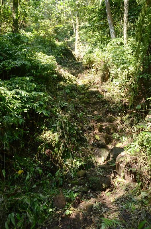 觀音山登山步道