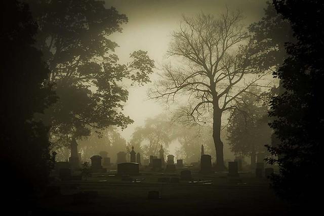 A Moment of Foggy Silence